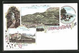 Lithographie Vierwaldstätter-See, Die Hohle Gasse, Hotel & Pension Gottlieben Meggen, Inselgruppe Bei Altstad - SZ Schwyz