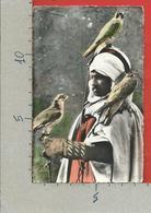 CARTOLINA NV ALGERIA - Scenes Et Types - Fauconnier - 9 X 14 - Scene & Tipi