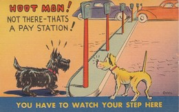 """COMIC; PU-1941; """"Hoot Mon! Not There - Thats A Pay Station!"""", Dogs At Parking Meters - Comics"""