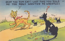 """COMIC; 1930-40s; """"Scat You Tom Cat! Last Time You Told Me You Only Wanted To Wrestle!!"""", Cat With Kittens Following - Comics"""