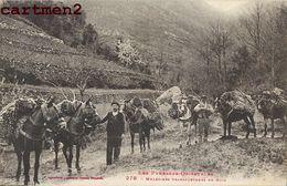 TYPE CATALAN MULETIERS TRANSPORTEURS DE BOIS ANES METIER BUCHERON COSTUME FOLKLORE PYRENEES-ORIENTALE 66 - France