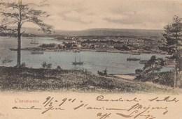 CHRISTIANIA-DANIMARCA-CARTOLINA VIAGGIATA IL 9-6-1901 - Norvegia