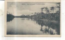 Bresil, Etat Du Parana, Le Fleuve Iguassu - Brésil