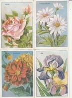 Chromos : TECHNICO : Mets Délectables - Place Aux Herbes : Romans-sur-isère - Drome ( Lot De 4 Images ) - Other