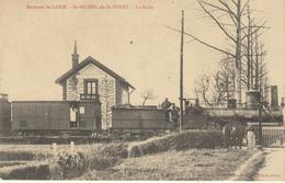 ENVIRONS DE L'AIGLE - SAINT MICHEL DE LA FORET (61)  LA HALTE - TRAIN LOCOMOTIVE 1498 - France
