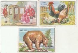 Chromos : TECHNICO : Mets Délectable - Place Aux Herbes : Romans-sur-isère - Drome ( Lot De 3 Images ) - Sonstige