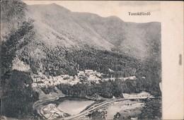 Bad Tuschnad- Băile Tușnad   Tusnádfürdő Blick Auf Die Landschaft 1917  - Roemenië