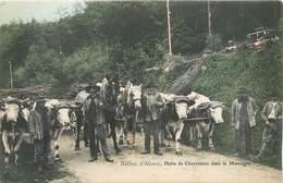CPA 90 Territoire De Belfort Ballon D'alsace Halte De Charretiers Dans La Montagne Attelage Boeufs Chevaux Bois - Autres Communes