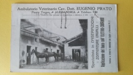 Ambulatorio Veterinario Cav. Dott. Eugenio Prato - Alessandria - Alessandria