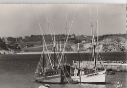 MORGAT (29). Les Thoniers Dans Le Port. Falaises Des Petites Grottes - Pêche