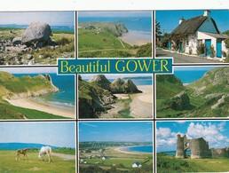 CP - Beautiful GOWER  - Non Ecrite - - Pays De Galles