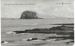 BASS ROCK FROM WEST ROCKS - NORTH BERWICK - EAST LOTHIAN - SCOTLAND - Berwickshire