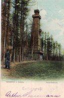 CPA Rare, Trebnitz I. Schies, Aussichtsthurm, Colorisée 1903 - Poland