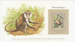 RWANDA Mona Monkey.BARGAIN.11 - Apen