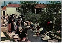 NAZARÉ - LAVADEIRAS DE PORTUGAL - Leiria