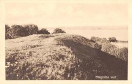 R173757 Margrethe Vold. Foreningen Slesvig Hus. 58805 - Ansichtskarten