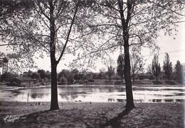 CAGNAC Les MINES Le Lac Et La Colonie   - Dentelée - - France