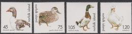 Norfolk Island ASC 711-714 2000 Ducks And Geese, Mint Never Hinged - Norfolk Island