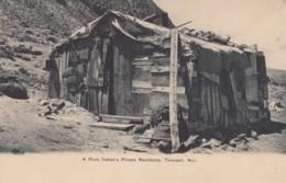 Tonopah Nevada, Piute Indian Residence Native American Home, C1900s Vintage Postcard - United States