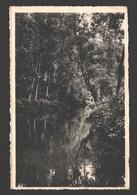 Vallée Du Samson - Le Ruisseau Entre Samson Et Goyet - Belgium