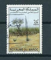2001 Marokko Desert Used/gebruikt/oblitere - Marokko (1956-...)