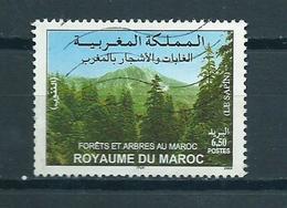 2003 Marokko Forest Used/gebruikt/oblitere - Marokko (1956-...)