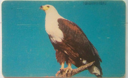 600 Units African Eagle   (previously Unknown RRR) - Nigeria