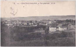 57. CHATEAU-SALINS. Vue Générale. 10 - Chateau Salins