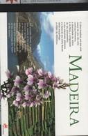 MADERE CARNET PRESTIGE C240 **- ROUGE GORGE - MOULIN - FLEURS - CHEVAL - PLONGEE SOUS MARINE Faciale 6.37 € - Holidays & Tourism