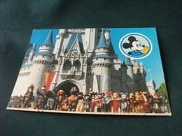 FANTASYLAND CASTELLO MAGICO DI CENERENTOLA  E PERSONAGGI WALT DISNEY  TOPOLINO ETC. - Disneyworld