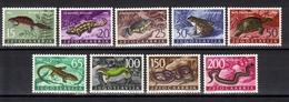 Yugoslavia,V Fauna 1962.,MNH - Unused Stamps