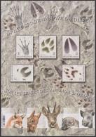 2018 - Bl 261 - In Het Spoor Van Wilde Dieren / Sur Les Traces Des Animaux Sauvages - XX - Libretti 1962-....