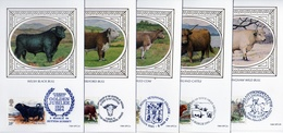 Uk 1984 Benham Silk Cattle, Bull, Cow Set Of 5 FD Maximum Cards / Postcards - Farm