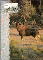 Aland 2000 Maximum Card - Aaland Wildlife - Mammal - The Moose - Aland