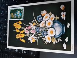 "Carte Maximum MONACO   "" Concours De Bouquets "" 1983 - Maximum Cards"