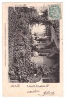 LOUVECIENNES - Sous La Véranda Du Château (carte Animée) - Louveciennes