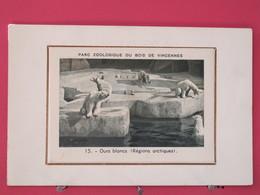Visuel Très Peu Courant - 75 - Paris - Parc Zoologique Du Bois De Vincennes - Ours Blancs - Scans Recto-verso - Arrondissement: 12