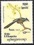 Kampuchea - MNH - 1984 - BIRDS :   Chestnut-winged Cuckoo -   Clamator Coromandus - Coucous, Touracos