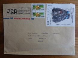 LETTRE 3 TIMBRES PAR AVION AVEC GRAND TIMBRE AVEC CHIEN SHIH TZU - Madagaskar (1960-...)
