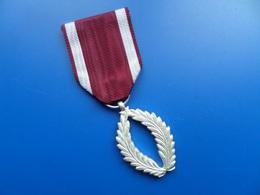 Palme Academique Belge, Medaille , Medaille - Belgique