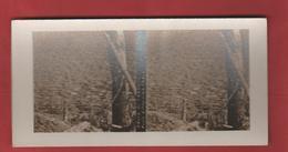 Vue Stéréoscopique Ravin De Fragroulle Le Coin Le Plus épouvantable Des Eparges - 1914-18