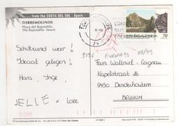 Timbre , Stamp Yvert N° 3196 , EUROPA : Chat ; Sur Cp , Carte , Postcard Du ??/08/1999 - 1991-00 Lettres