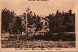 BUSSIERE GALANT HOTEL DES PINS FAURE PROPRIETAIRE - Bussiere Poitevine