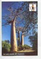 Madagascar - La Voie Royale Des Baobabs  (n°59 Coll Visages) Arbre - Madagascar