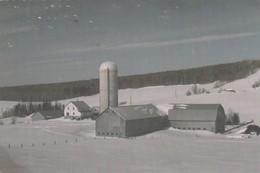 LEJEUNE, Canada, PU-1989; Bureau Municipal - Other
