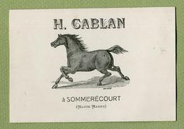 """SOMMERECOURT  (52) : """" HARAS De CHEVAUX  H. CABLAN """" - Cartes De Visite"""