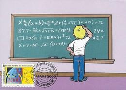 07.03.2000 : Mathématiques   -   Wiskunde   Année Mondiale Des Mathématiques - Cartes Maximum