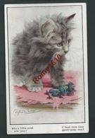E. Valter. Chat Et Fétiche Nenette Et Rintintin.Politique, Guerre. Série Artistique N°2861. Florence House, Barnes - War 1914-18