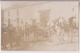 CARTE PHOTO : DES PAYSANS - UNE HERSE AGRICOLE TRACTEE PAR UN CHEVAL - APRES LE LABOURAGE - RATEAU - 2 SCANS - - Cultures
