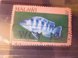MALAWI YVERT N° 416 - Malawi (1964-...)